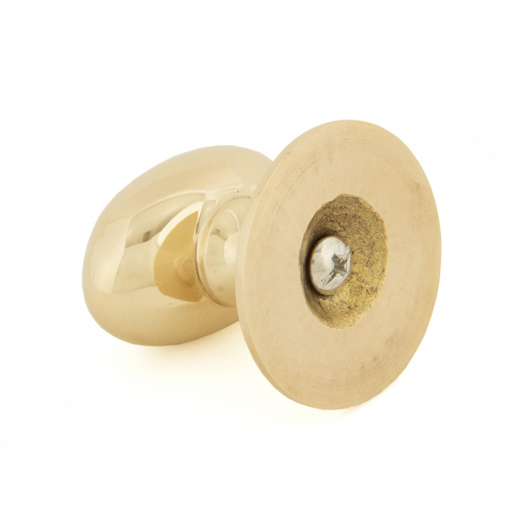 Large Polished Brass Oval Cabinet Knob