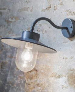 Charcoal Swan Neck Light