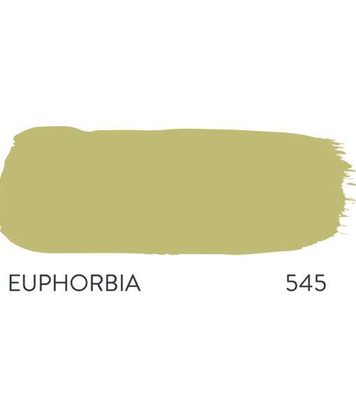 Euphorbia Paint