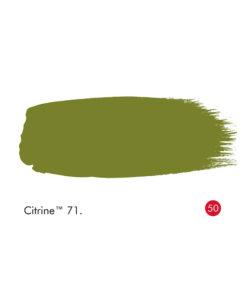 Little Greene Citrine Paint (71)