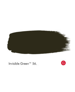 Little Greene Invisible Green Paint (56)