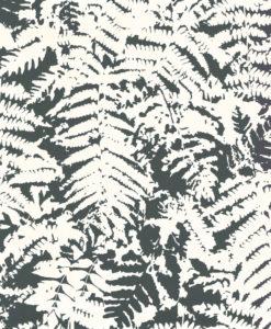 Little Greene Fern Off Black Wallpaper
