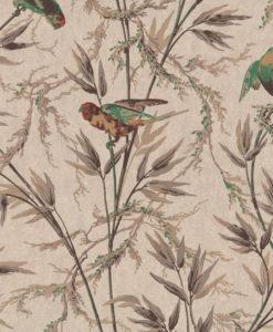 Little Greene Great Ormond St Cappuccino Wallpaper